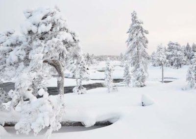 winterskulpturen
