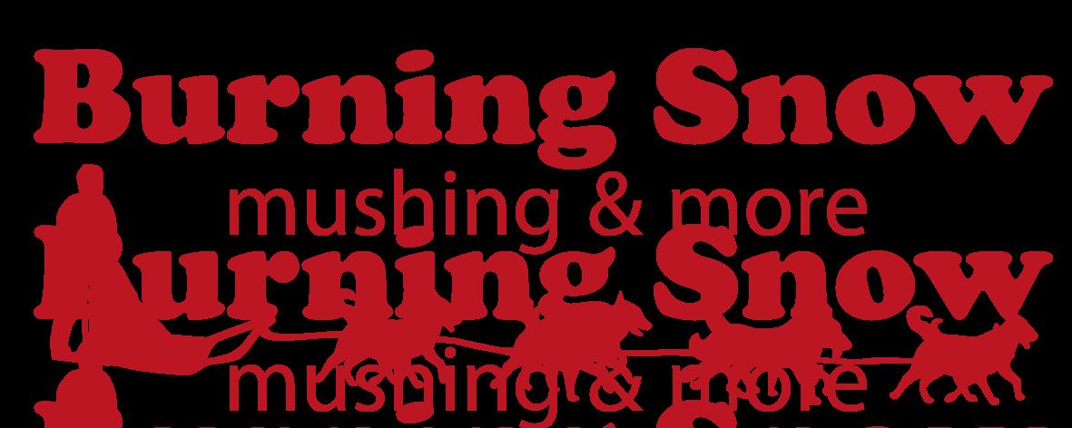 Burning Snow - Hundeschlittentouren und Husky Urlaub in schwedisch Lappland