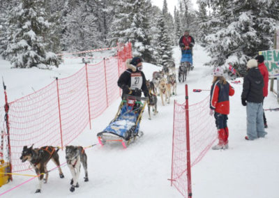 hundeschlittenrennen8