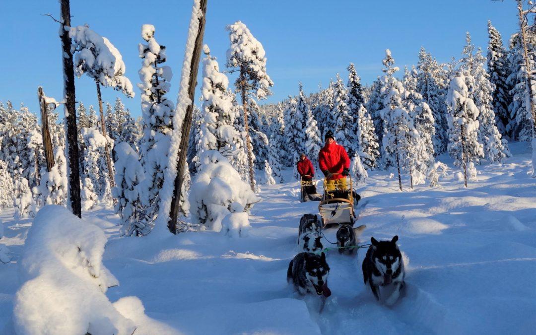 Und es ist Winter in Lappland!